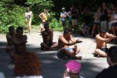 Gosti na kampu _maorski plesači